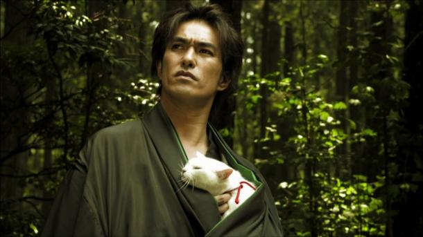Samurai Cat 5